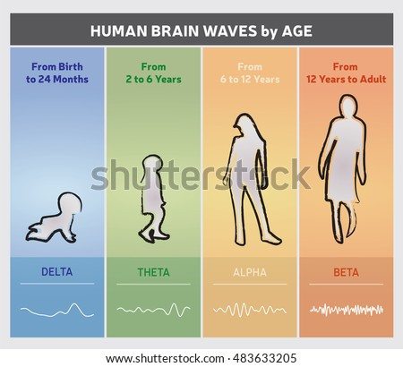 human brain waves by age chart stock vector 483633205. Black Bedroom Furniture Sets. Home Design Ideas