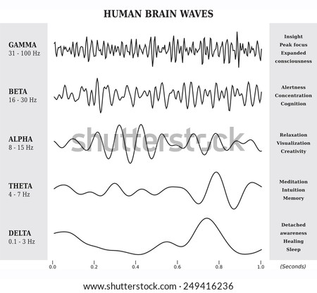 Human Brain Waves Diagram / Chart / Illustration Black and White - stock vector