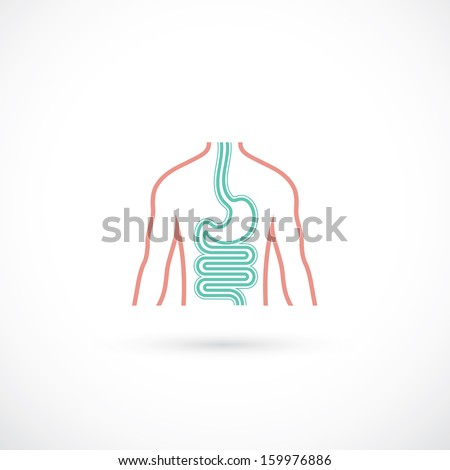Human digestive system symbol - vector illustration - stock vector
