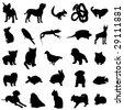 Human favorite pet animal - stock vector