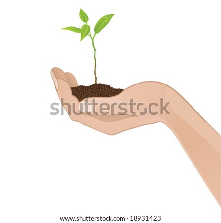 Human hand with a plant (vector) - stock vector