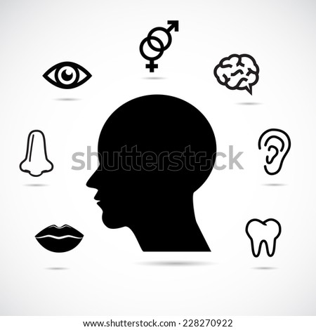 Human head and face parts. Educational vector illustration. - stock vector