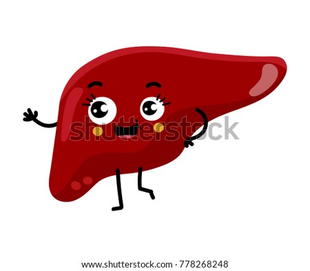 Human Liver Cute Cartoon Character Body Stock Vector 778268248 ...