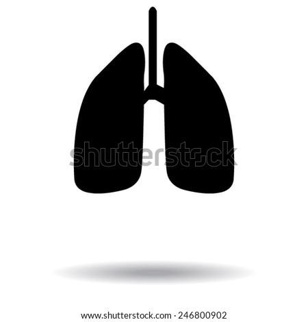Human lung. Medical background. Health care