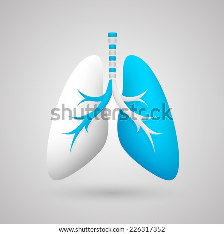 Human lungs. Vector illustration - stock vector