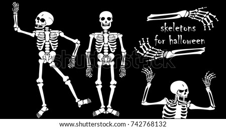 human skeletons for halloween in vector collapsible the dead on the day of