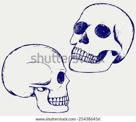 Human skull . Doodle style - stock vector