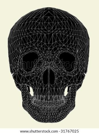 Human Skull Vector 01 - stock vector