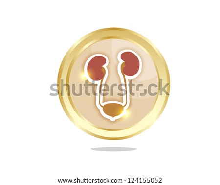 human urinary system icon - stock vector
