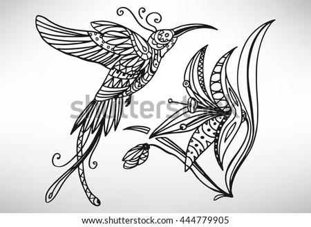 Hummingbird (colibri). Hand Drawn With Ethnic Pattern. Coloring Page    Isolated