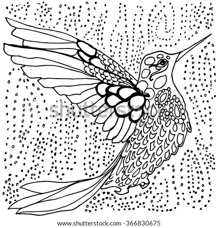 hummingbird coloring page black and white drawing outlines in pen and ink hand drawn tiny - Hummingbird Coloring Page