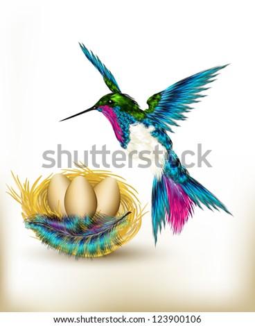 Hummingbird with nest - stock vector
