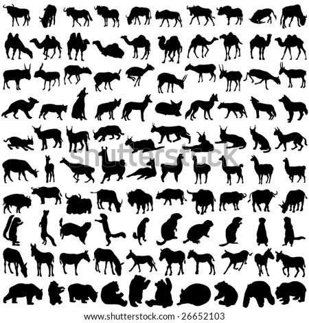 Hundred silhouettes of wild animals from Asia and America