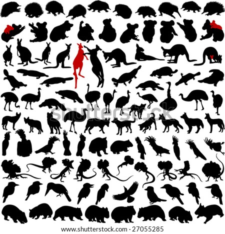 Hundred silhouettes of wild rare animals from Australia, Tanzania and New Zealand - stock vector