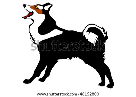 Husky on a white background - stock vector