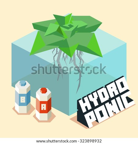 hydroponic for home gardening. Isometric vector illustration - stock vector
