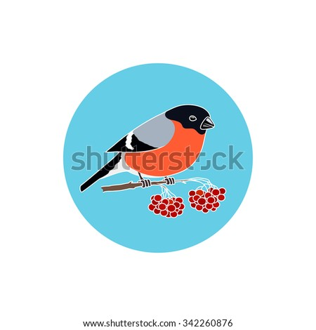 Icon Colorful  Bullfinch, Round Icons  Colorful  Bullfinch, Bullfinch Sitting on a Branch with Bunches of Rowan, Icon Christmas Decorations,  Merry Christmas and Happy New Year , Vector Illustration - stock vector