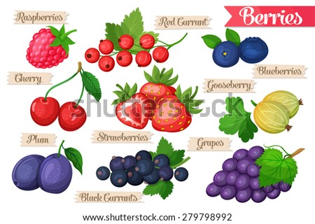 Icons of juicy ripe bright  drawn berries  - stock vector