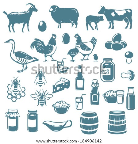 icons of livestock and food from the farm  - stock vector