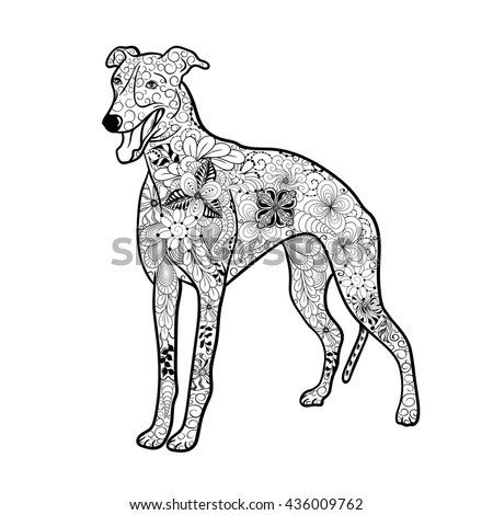 Greyhounds Stock Photos Royalty Free Images Vectors Shutterstock