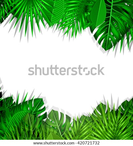 illustration natural frame with green tropical leaves summer beautiful background vector - Natural Frame
