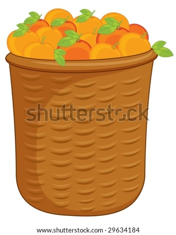 illustration of a basket of oranges