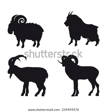 Sheep Vector Silhouette Black Silhouette of Sheep