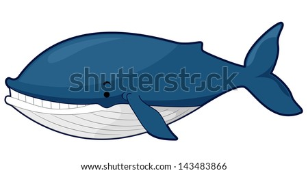 Illustration of a Blue Whale - stock vector