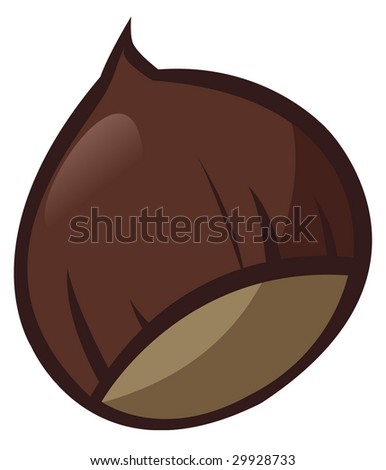 Illustration of a chestnut on white background - Isolated object