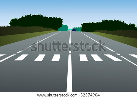 Illustration of a country road with zebra - stock vector