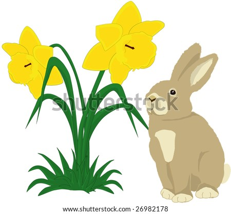 Illustration of a cute bunny with two daffodils on white background - stock vector