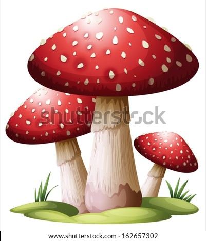 Illustration of a red mushroom on a white background - stock vector