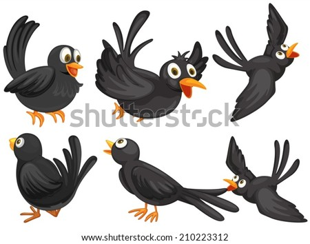 Illustration of a set of black birds - stock vector
