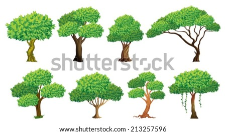 Illustration of a set of many trees - stock vector