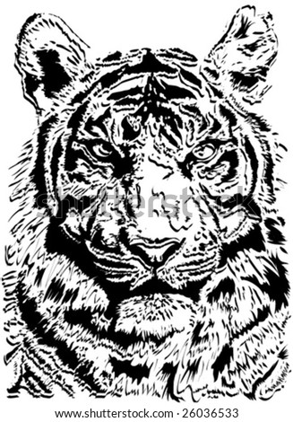 illustration of a tiger face isolated on white background - stock vector