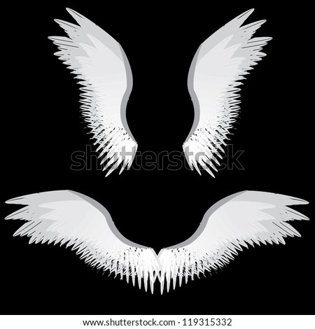 Illustration Of Abstract Angel Wings On Black Background