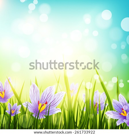 Illustration of Abstract Natural Background With Crocus Flowers, Copyspace - stock vector