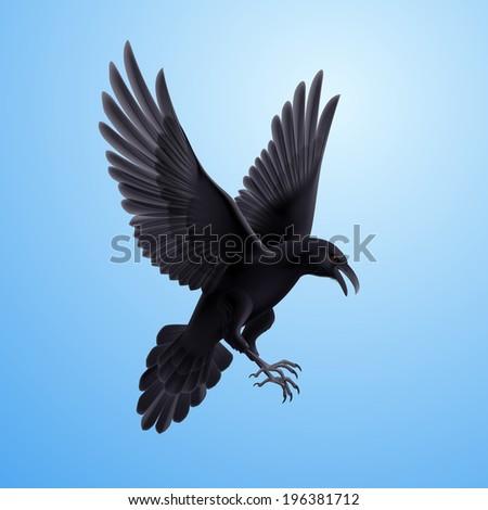 Illustration of aggressive black raven on blue sky background  - stock vector