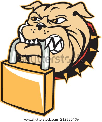 Illustration of an bulldog dog mongrel head mascot biting a padlock facing front on white background done in retro style.