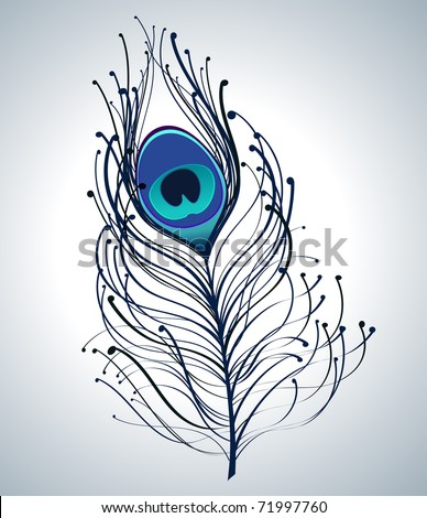 illustration of beautiful peacock feather