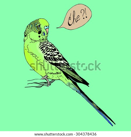 illustration of budgie with text bubble - stock vector