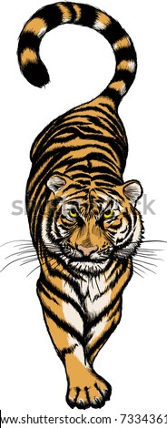illustration of Crouching Tiger - stock vector