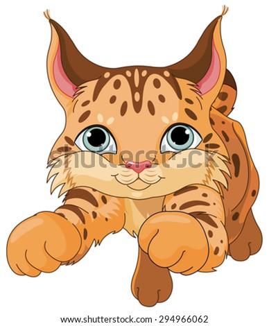 Illustration of cute lynx  - stock vector