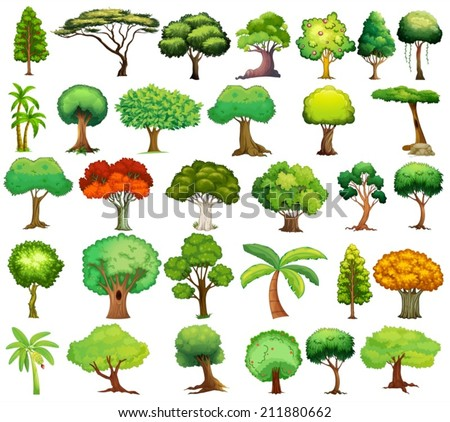 Illustration of different kind of tree - stock vector