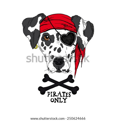 illustration of doggy pirate - stock vector