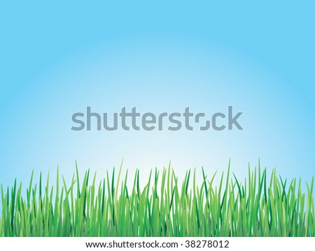 Illustration of green grass in a vector file