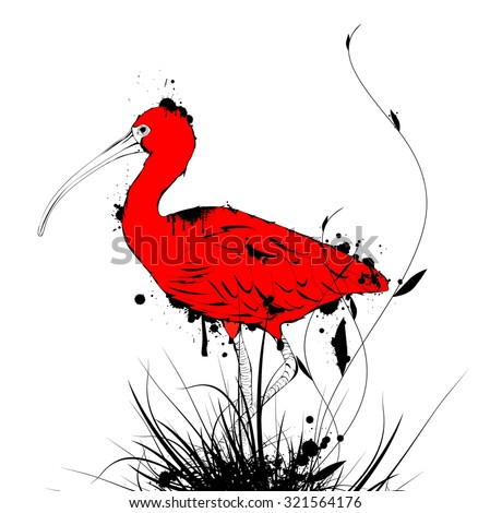 Illustration of Grunge Vintage Designed Eudocimus ruber or Red Ibis Over White Background - stock vector