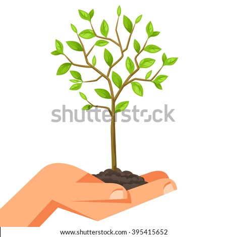 Illustration of human hand holding green small tree. Image for booklets, banners, flayers, article and social media. - stock vector