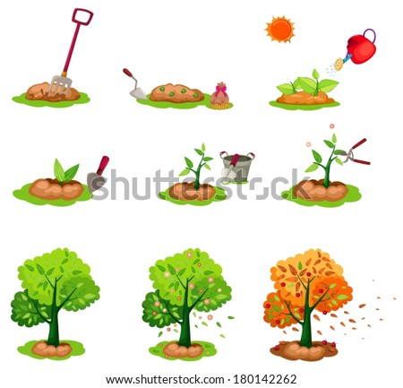 illustration of isolated seeding trees set on white - stock vector