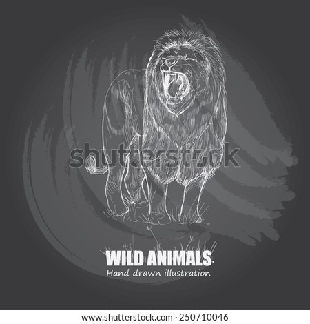 illustration of Lion. wild animals background. - stock vector